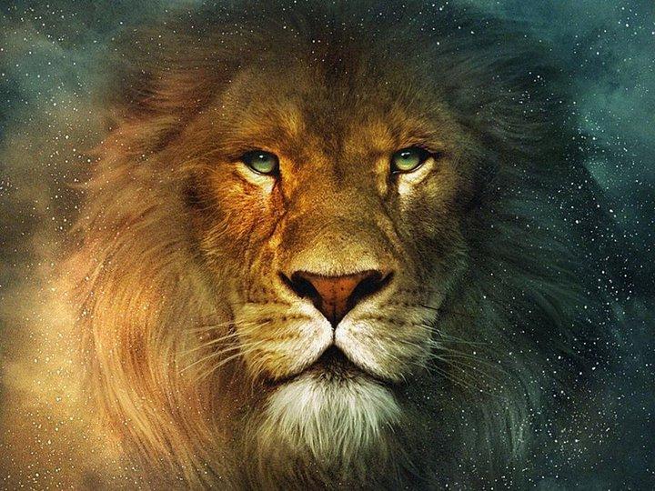 Image result for leo